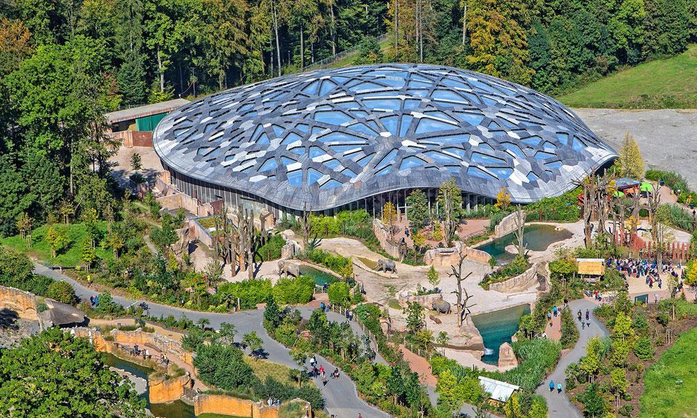 Zoológico Zurique Zurich Suíça Switzerland